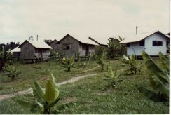 Troolie_cottages_in_Jonestown