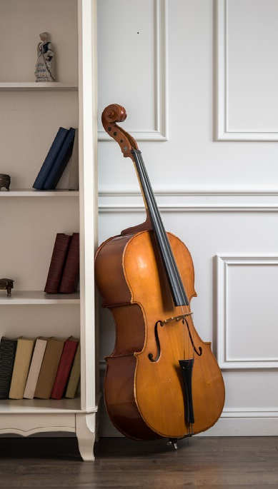 Cello leaned up against a bookcase.