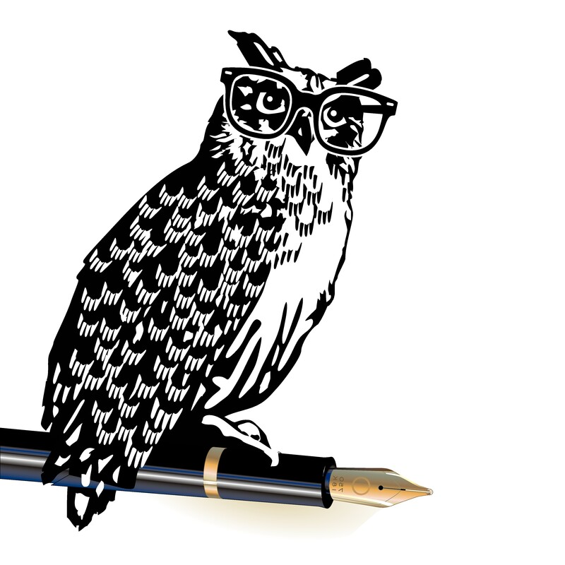 Owl in glasses sitting on a pen.